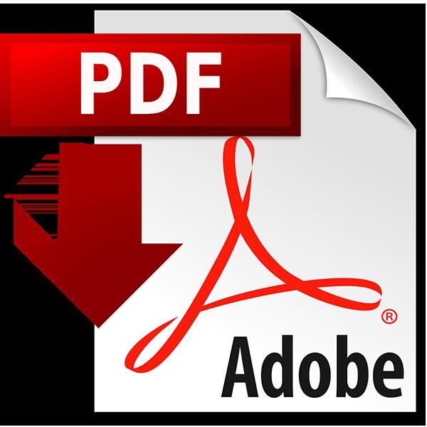 Znalezione obrazy dla zapytania pdf icon